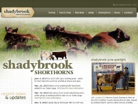 shadybrook.ca