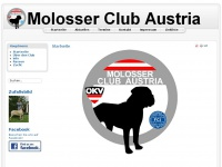 molosser.at