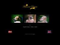 falconers-dream.com