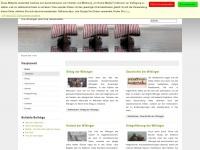 wikingerzeit.net Thumbnail