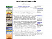 South Carolina Cattle