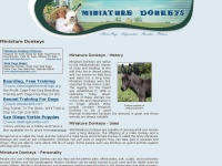miniature-donkeys.org
