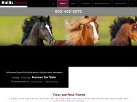 hollisranch.com
