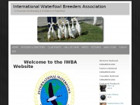 Iwba.org