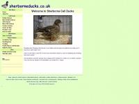 sherborneducks.co.uk