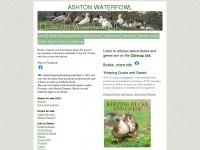 ashtonwaterfowl.net