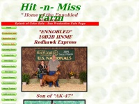 hitnmissfarm.com
