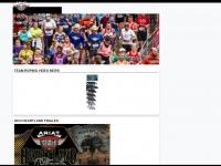 wstroping.com