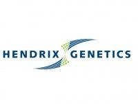 hendrix-genetics.com