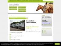 anhaengervertrieb.com