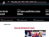 icetigers.de Thumbnail