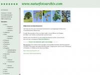 naturfotoarchiv.com