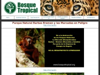 bosquetropical.org