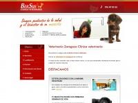 veterinariozaragoza.es Thumbnail