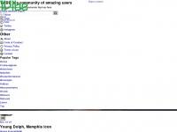 1vibe.com