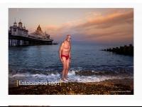bipp.com