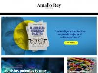amaliorey.com
