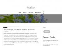 rayngphoto.com