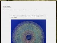gouveiac.com