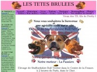 tetes-brulees.com