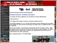 ligue-hockey-cosom.com