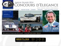 ameliaconcours.org