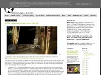 rockinwalls.com