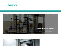 nesys.fr