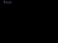 pselion.net