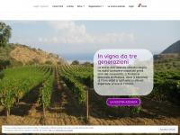 gagliovignaioli.com