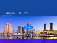 translationsolutions-us.com