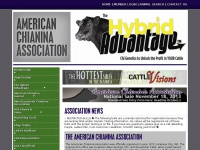 Chicattle.org - American Chianina Association | Welcome