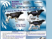 shoregenetics.com