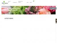 lillylaneflowers.com