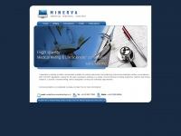 minervamedicalwriting.co.uk