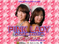 pinkladyamerica.com