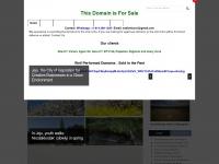 jejuweekly.com