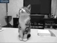 jhunderground.com