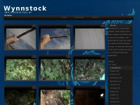 wynnstock.blogspot.com