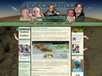 sidecarsally.com