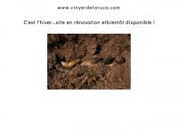 vinyerdelaruca.com