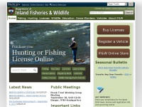 Mefishwildlife.com - Maine Department of Inland Fisheries and Wildlife - We are stewards protecting, preserving, and enhancing Maine's natural resources, quality of place and economic future.