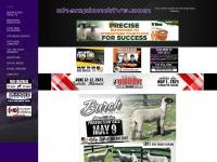 championdrive.com