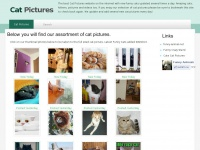 catpictures.co Thumbnail