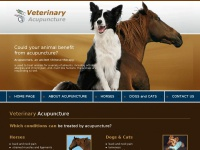 animal-acupuncture.co.za Thumbnail