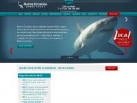 sharkwatchsa.com