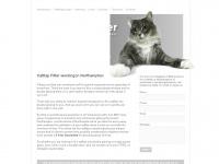 catflapfitternorthampton.co.uk Thumbnail