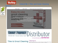 Tilesandgroutcleaning.co.uk