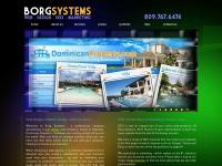 borgsystems.com