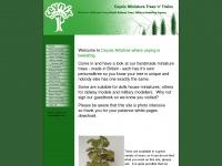 Ceynix.co.uk